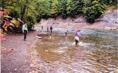 Salmon enhancement pays big dividends