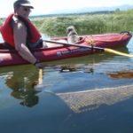 Estuary Clean Up