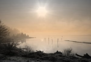 Morning Mist by Rena Rogers