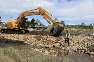 Salt Marsh Construction