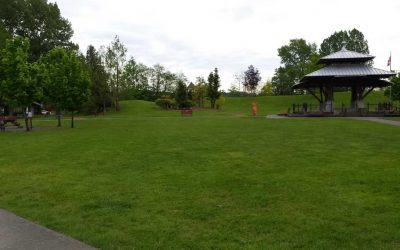 Simms Millennium Park