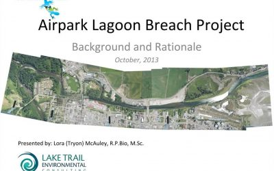 Airpark Lagoon Breach Project Background and Rationale