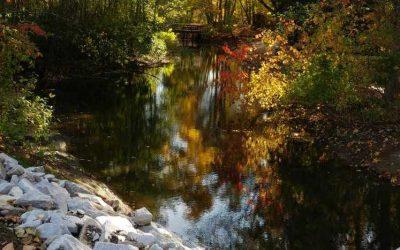 Seasonal Changes in the Comox Valley