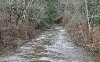 Tsolum Tributaries Creek SHIM Reports and Maps