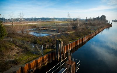 Donating to Kus-kus-sum and Project Watershed just got Easier
