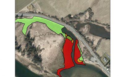 Salt Marsh Restoration in the K'ómoks Estuary at Dyke Slough